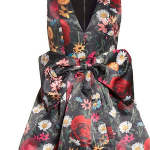 alice + olivia Daralee Bow Front Party Dress